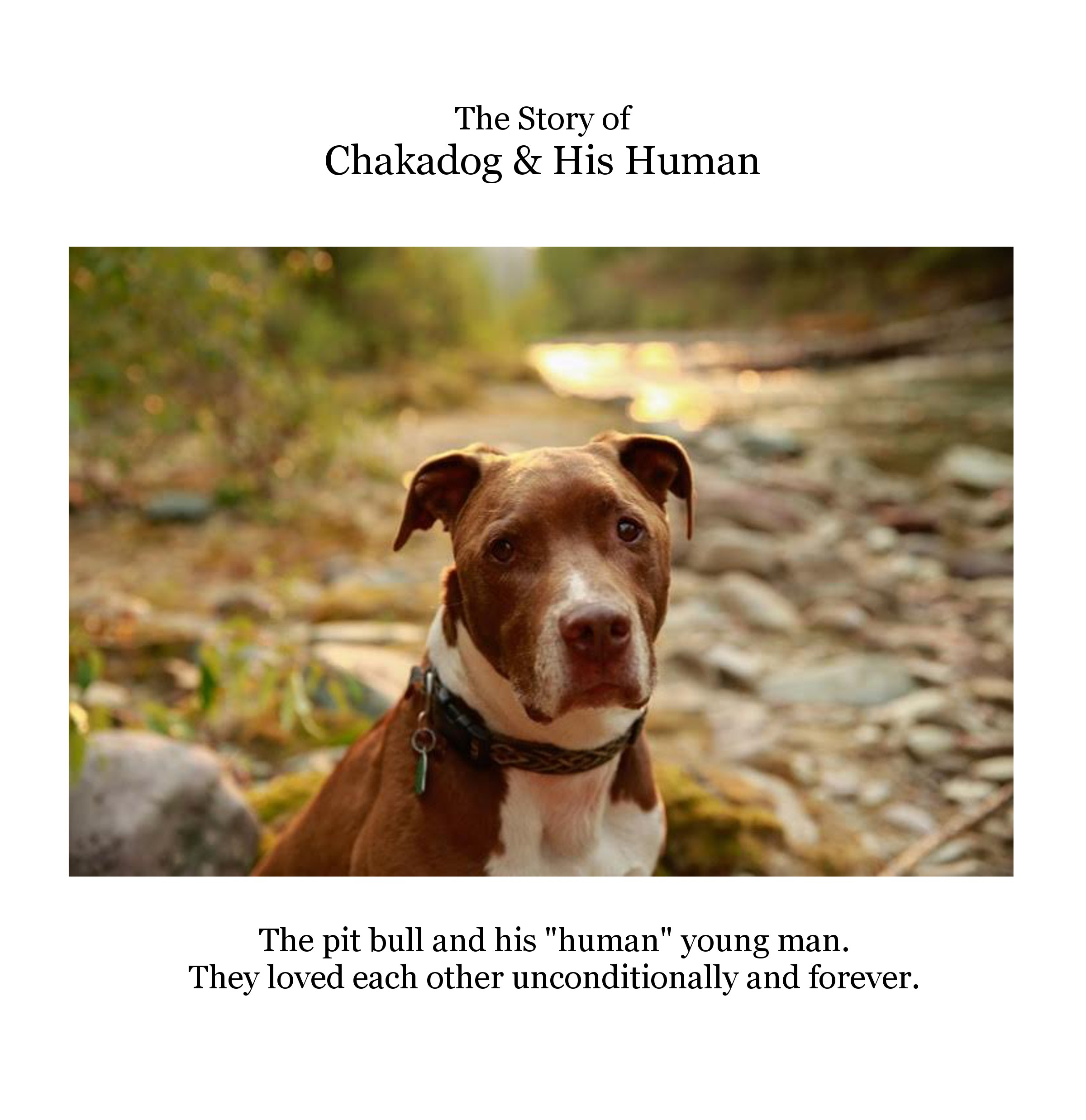 chakadog cover option 3